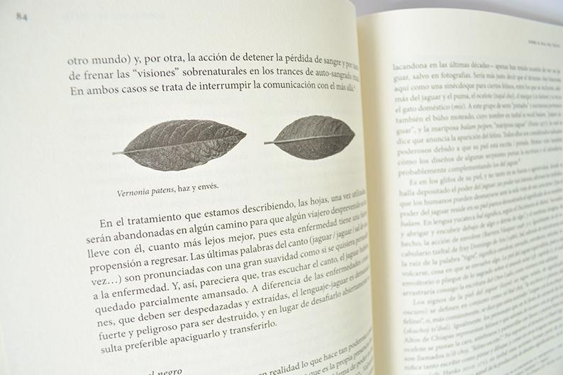 libana_ktv2